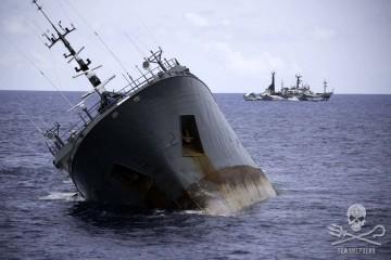 news-150406-2-4-SA-Thunder-Sinking-0-066A4858-1000w_1