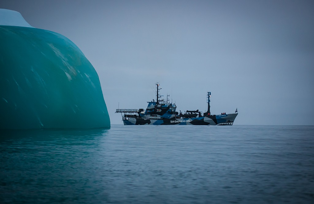 Bob Barker Antartic