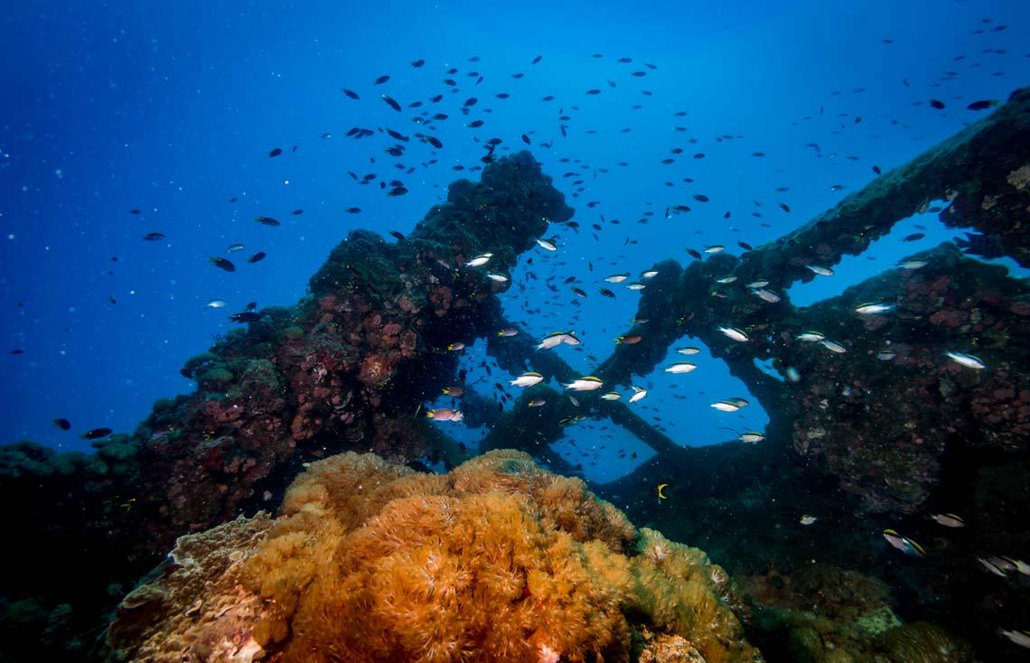 scuba dive the yongala